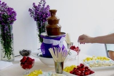 Fotos de Fuente de chocolate y fuente de coctel 1