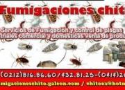 SERVICIO DE FUMIGACIONES EN CARACAS