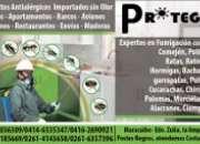 Fumigacion en Maracaibo con Personal Experto